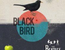 The Beatles – Blackbird